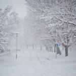 Snijeg (Foto: Filip Trezner / Antena Zadar)