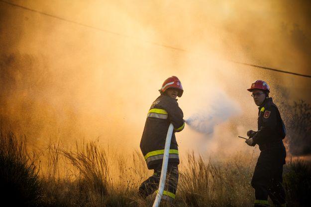 Gašenje požara, vatrogasci