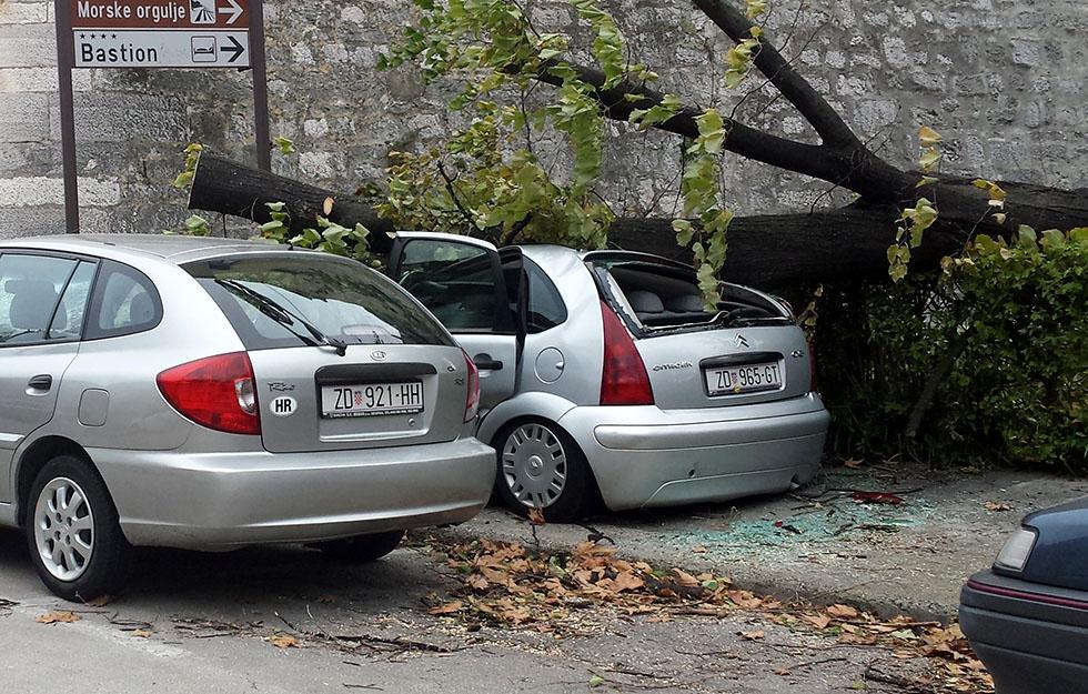 Uništeno vozilo, bura, pad stabla